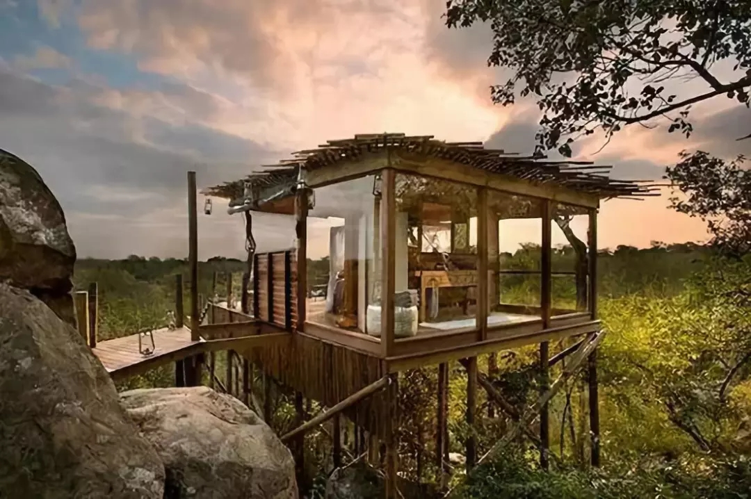 树屋,窗外便是最美的风景